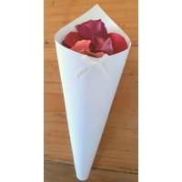 Biodegradable Rose Petal Wedding Confetti - Cone Pack (36)