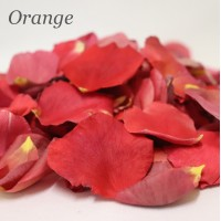 4 Cups - Freeze Dried Rose Petals